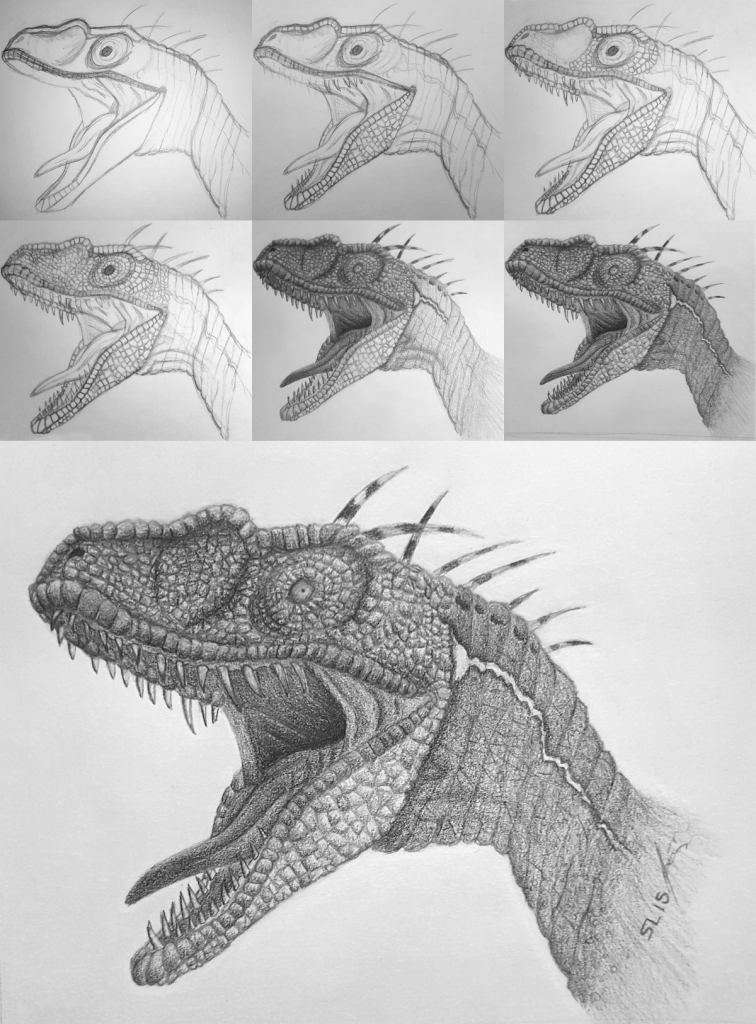 "sequence of images showing the progression of a pencil sketch of the velociraptor named ""Blue"" from the movie Jurassic World"